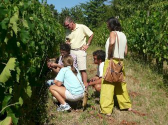Wine tasting near Panzano in Chianti
