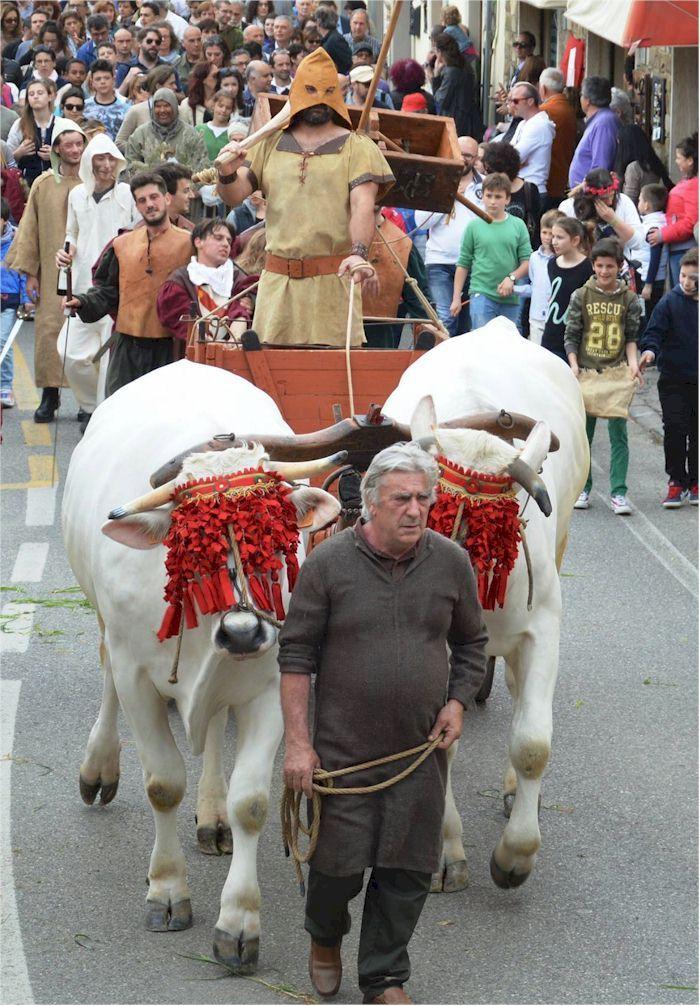 Festival of the Stagion Buona In Panzano