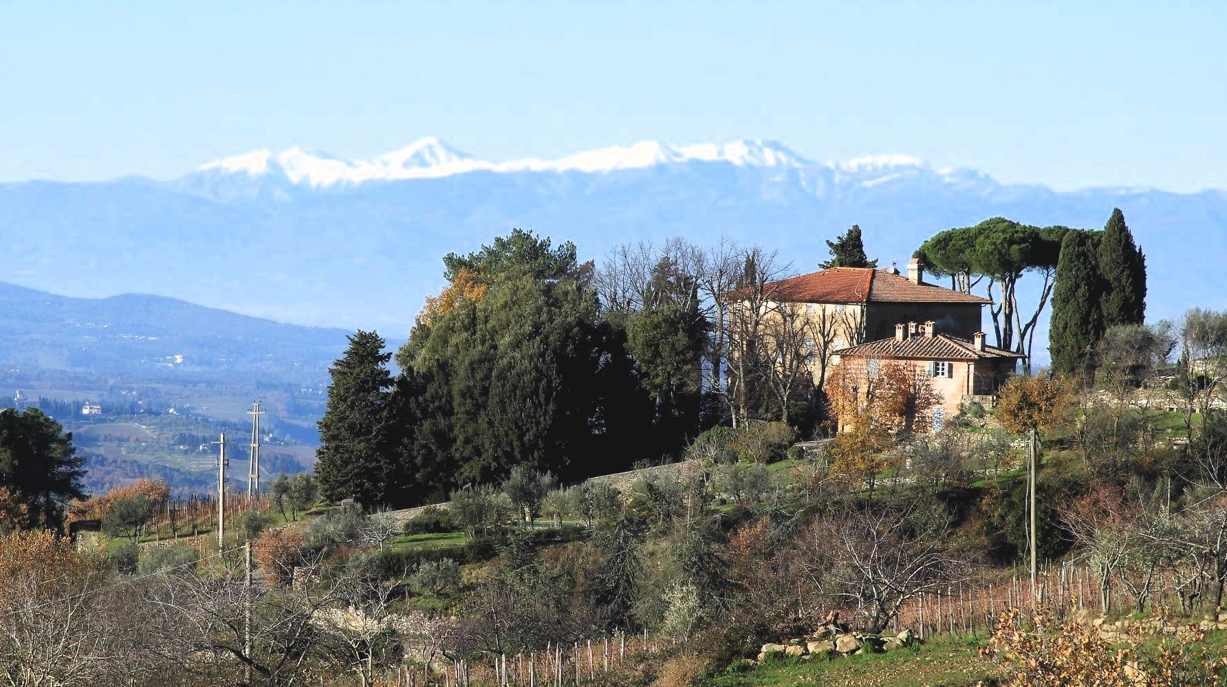 View of the Apuan Alps from Lamole in Chianti